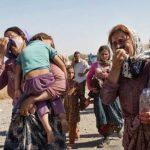 در حسرت نبودن یک حکومت ملی و مقتدر؛ کاش کردستان امروز حمایت ارتش ایران را پشت سرش احساس میکرد...