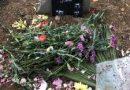 تجمع جمعی از معلمان بازنشسته و شاغل و فعالان صنفی و مدنی بر مزار شهید پویا بختیاری