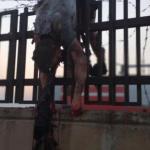 + ۱۸. ویدیوی دلخراش از مسافرین سقوط هواپیمای اوکراین