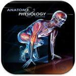 فیزیولوژی بدن انسان