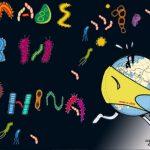 محققان هاروارد: ویروس کرونا احتمالا از ماه آگوست 2019 در ووهان چین شایع بوده