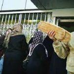 فیلمهای افزایش قیمت نان و کاهش کار نانواییها به دنبال کمبود و گرانی آرد در کرج، ماهدشت و شهریار