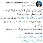 پروانه سلحشوری : گویی در ایران، دوران قاجار در حال تکرار است؛ فقر و قحطی، بیماری و مرگ!