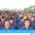 پومپئو: سیاست چین در قبال مسلمانان «نسل کشی» و «جنایت علیه بشریت» است