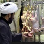 ملاها از هرچیزی پول در می آورند، حتی کشتن مرغ ها