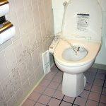 آشنایی با احکام و نحوه طهارت در توالت های فرنگی